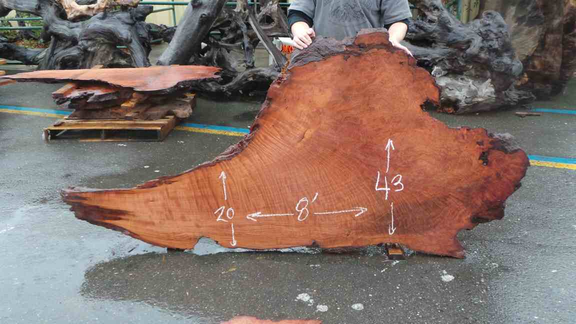 Burl Table Slab - Nice Curly Burl Slab