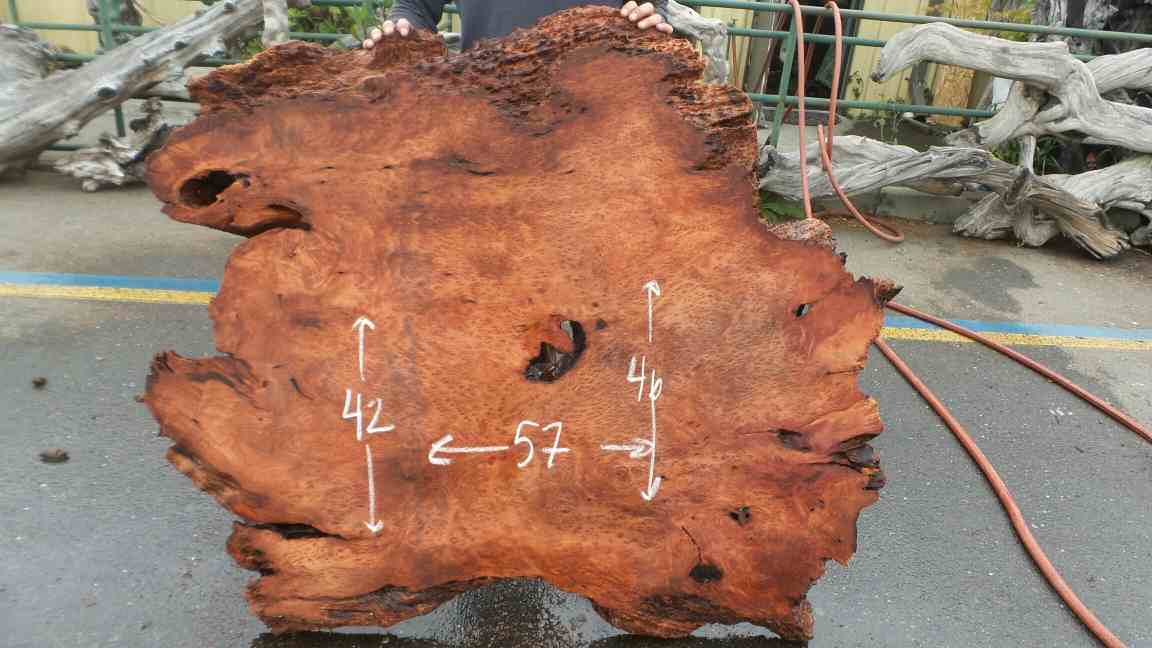 Redwood Burlwood Slab - Redwood Burl Furniture