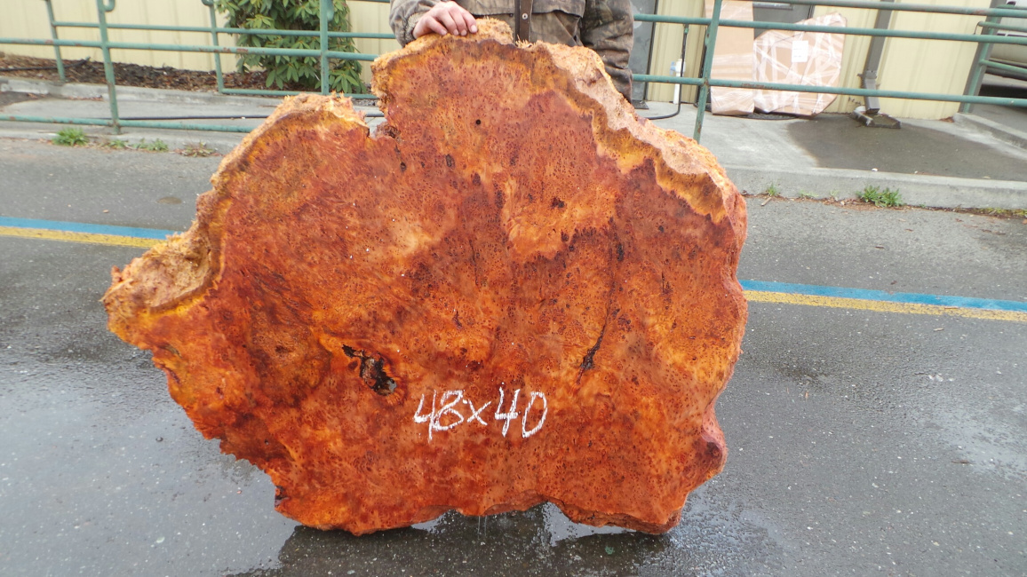Burl lace slab for sale